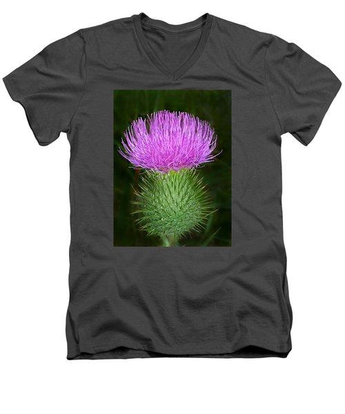 Scottish Thistle  Men's V-Neck T-Shirt