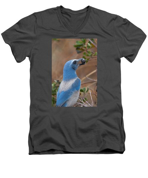 Men's V-Neck T-Shirt featuring the photograph Scrub Jay With Acorn by Paul Rebmann