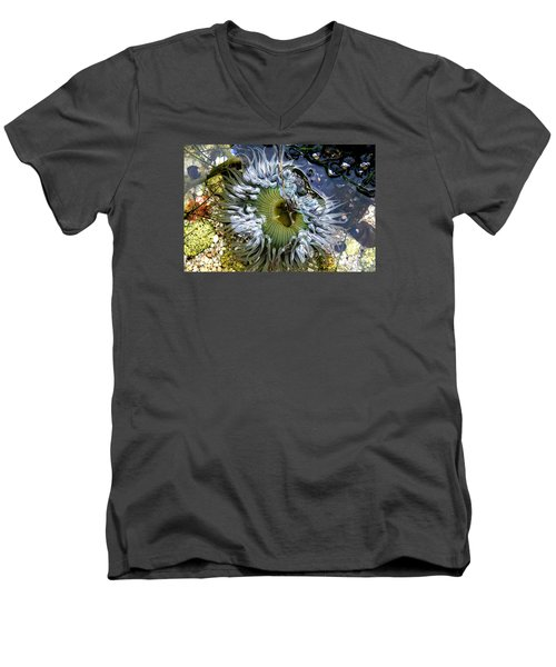 Sea Anemone Men's V-Neck T-Shirt