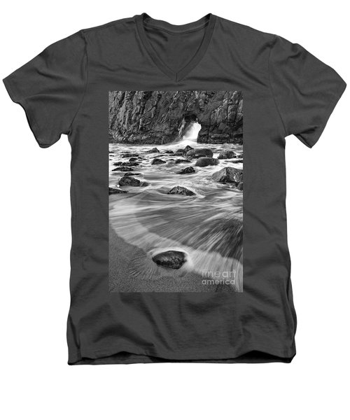 Sea Fan Men's V-Neck T-Shirt