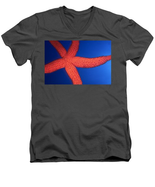 Sea Star Men's V-Neck T-Shirt