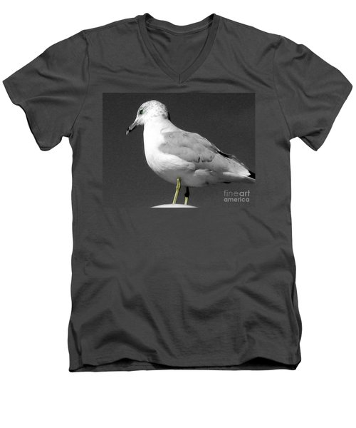 Men's V-Neck T-Shirt featuring the photograph Seagull In Black And White by Nina Silver