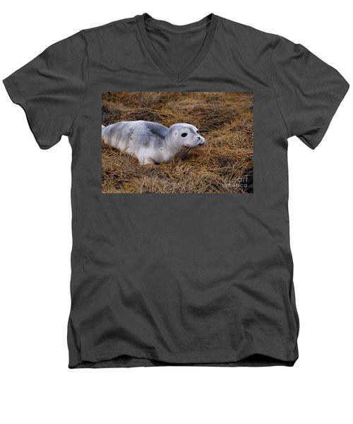 Seal Pup Men's V-Neck T-Shirt by DejaVu Designs
