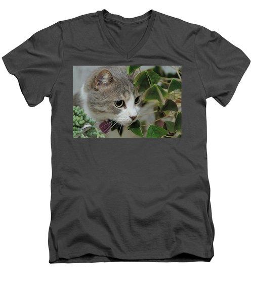 Secret Garden Men's V-Neck T-Shirt