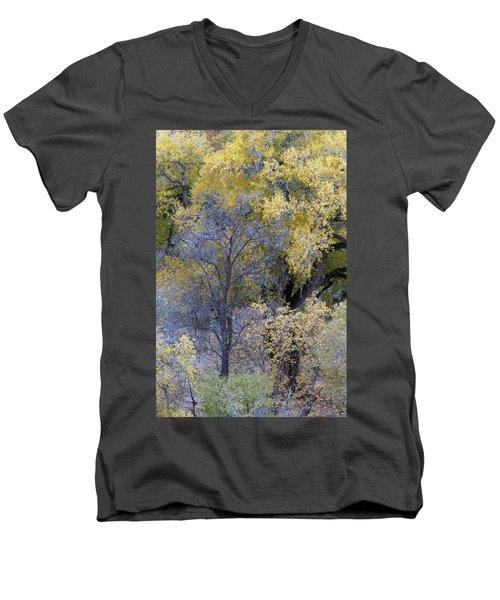 Sedona Fall Color Men's V-Neck T-Shirt