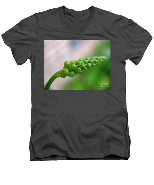 Seed Pod Men's V-Neck T-Shirt by Patti Whitten