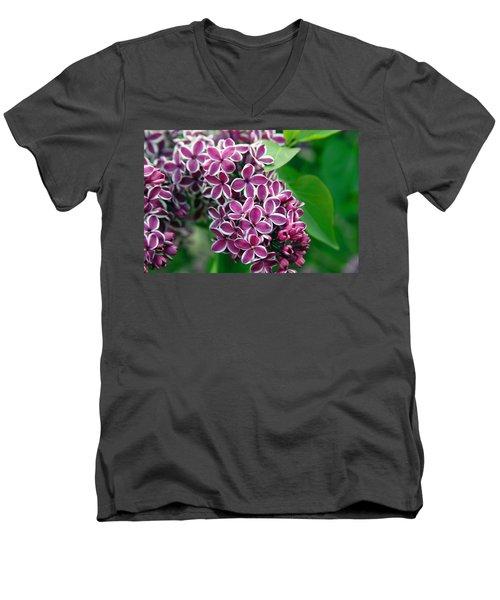 Sensation Lilac Men's V-Neck T-Shirt