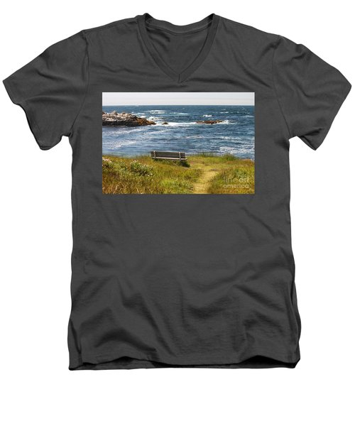 Serenity Bench Men's V-Neck T-Shirt