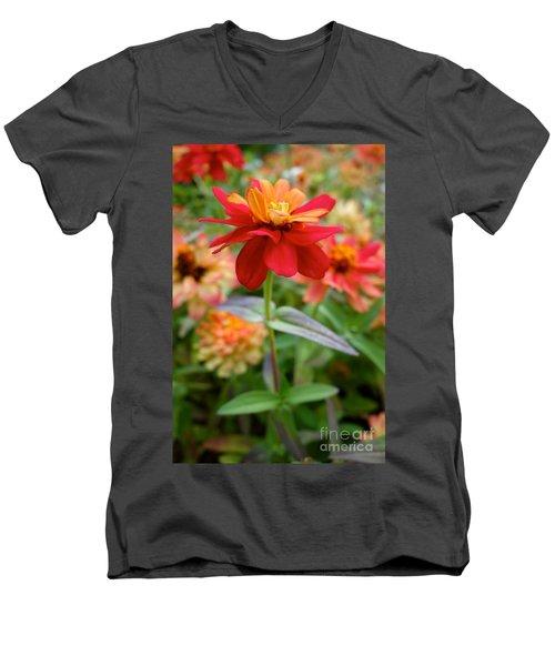 Serenity In Red Men's V-Neck T-Shirt