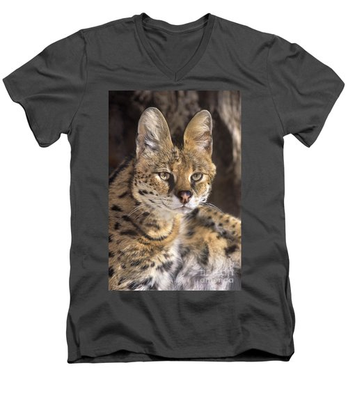 Men's V-Neck T-Shirt featuring the photograph Serval Portrait Wildlife Rescue by Dave Welling