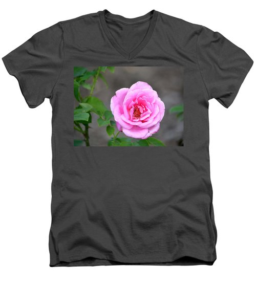 Men's V-Neck T-Shirt featuring the photograph Shades Of Pink by Deena Stoddard