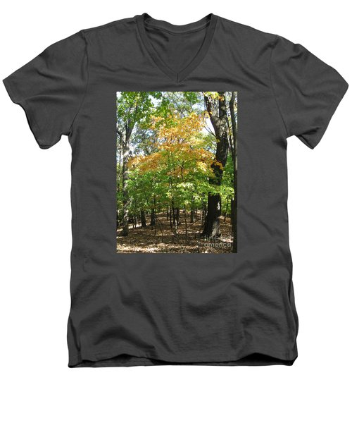 Shadows In The Forest Men's V-Neck T-Shirt