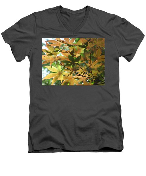 Shadows Of Maple  Men's V-Neck T-Shirt