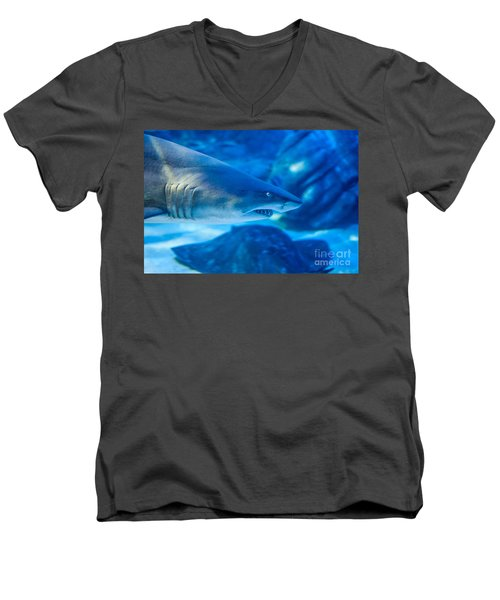 Shark Men's V-Neck T-Shirt