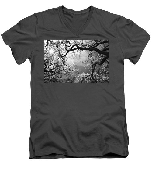 Sheltering Sky Men's V-Neck T-Shirt