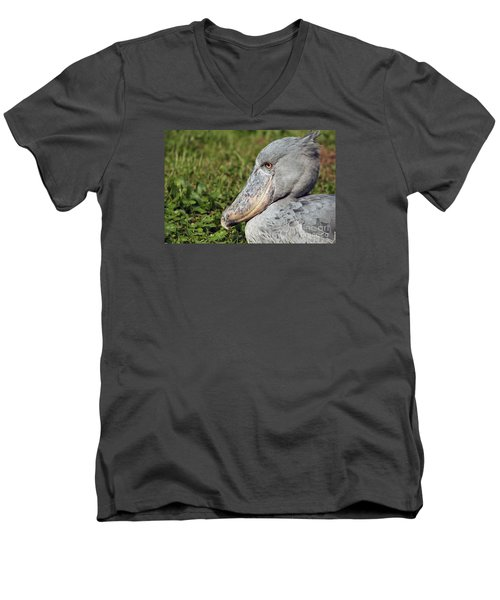 Shoebill Balaeniceps Rex Men's V-Neck T-Shirt