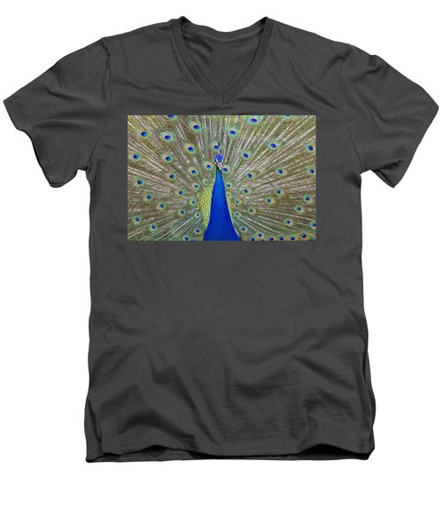 Men's V-Neck T-Shirt featuring the pyrography Showing Off by Shoal Hollingsworth