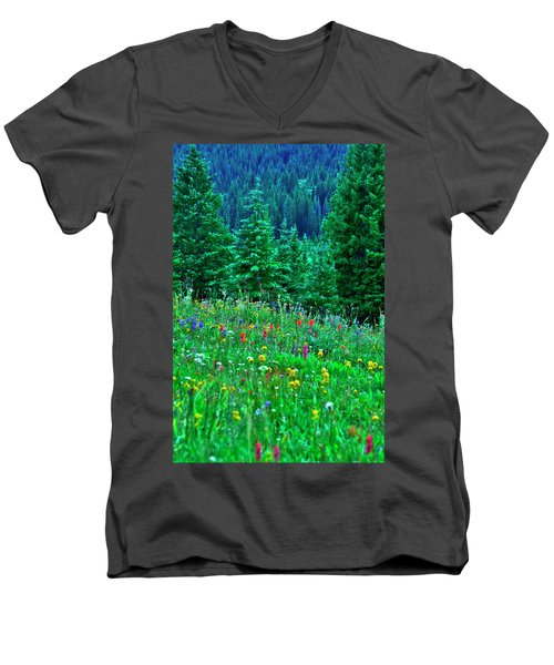 Shrine Pass Wildflowers Men's V-Neck T-Shirt