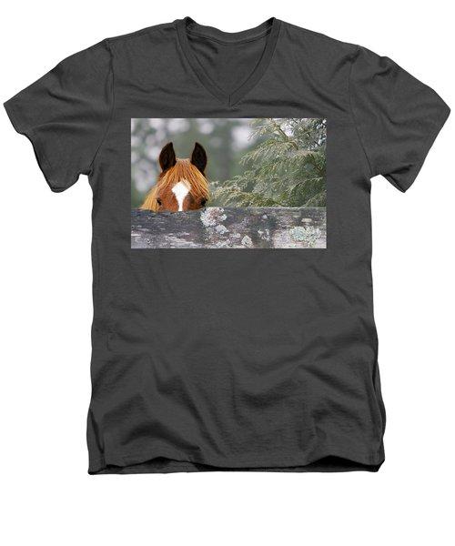 Shyness Men's V-Neck T-Shirt by Michelle Twohig