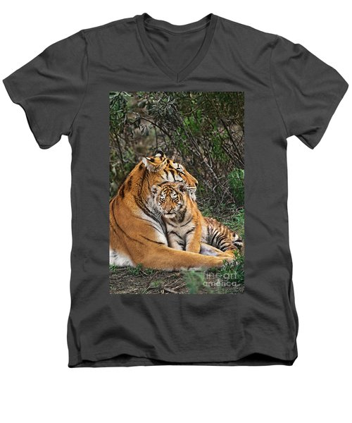 Siberian Tiger Mother And Cub Endangered Species Wildlife Rescue Men's V-Neck T-Shirt by Dave Welling