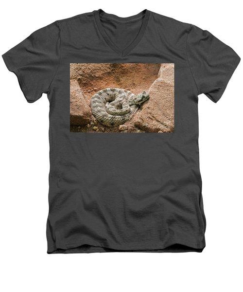 Sidewinder 2 Men's V-Neck T-Shirt
