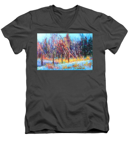 Signs Of Spring - Trees And Snow Kissed By Spring Light Men's V-Neck T-Shirt