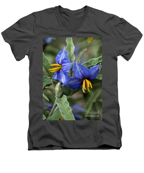 Men's V-Neck T-Shirt featuring the photograph Silver Leaf Blooms by Mae Wertz