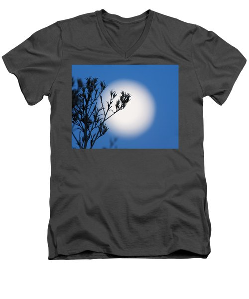 Men's V-Neck T-Shirt featuring the photograph Silver Sage by Jim Garrison