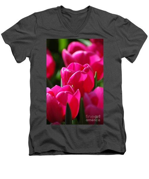 Sun Kissed Men's V-Neck T-Shirt by Christiane Hellner-OBrien