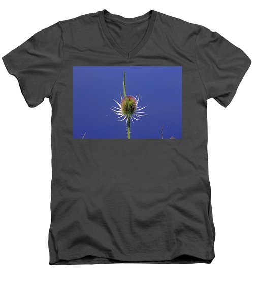 Single Teasel Men's V-Neck T-Shirt by Tony Murtagh