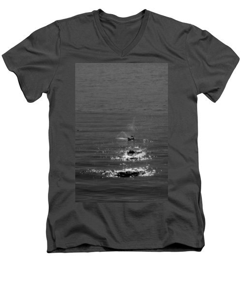 Skipping Stones Men's V-Neck T-Shirt