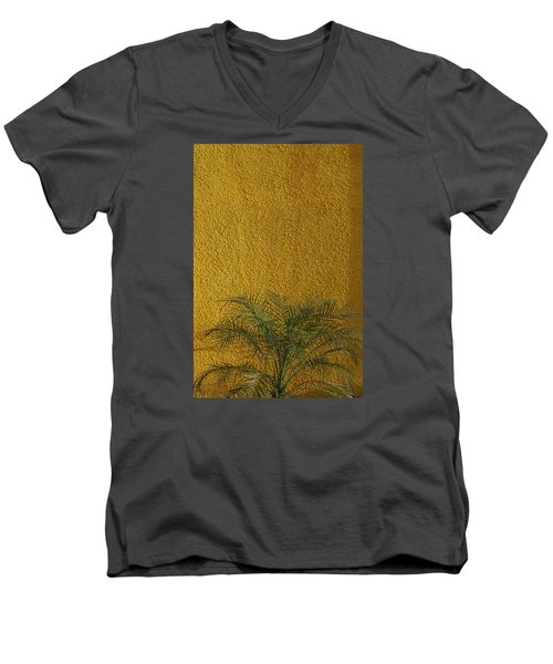 Skc 1243 Colour And Texture Men's V-Neck T-Shirt by Sunil Kapadia