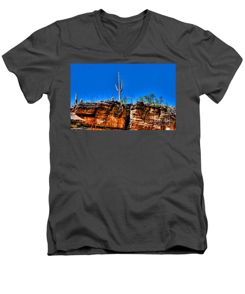 Sky Island Men's V-Neck T-Shirt