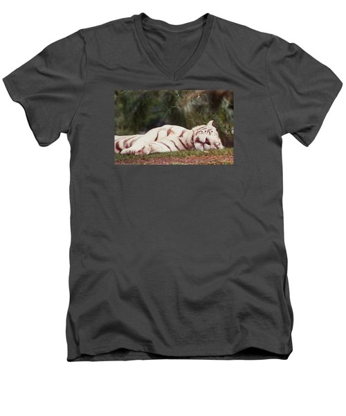 Sleeping White Snow Tiger Men's V-Neck T-Shirt by Belinda Lee