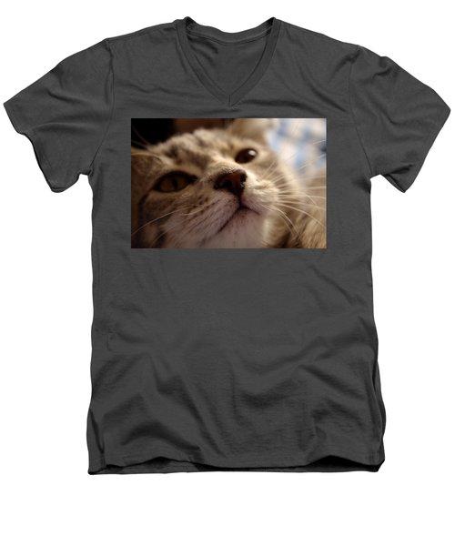 Sleepy Kitten Men's V-Neck T-Shirt