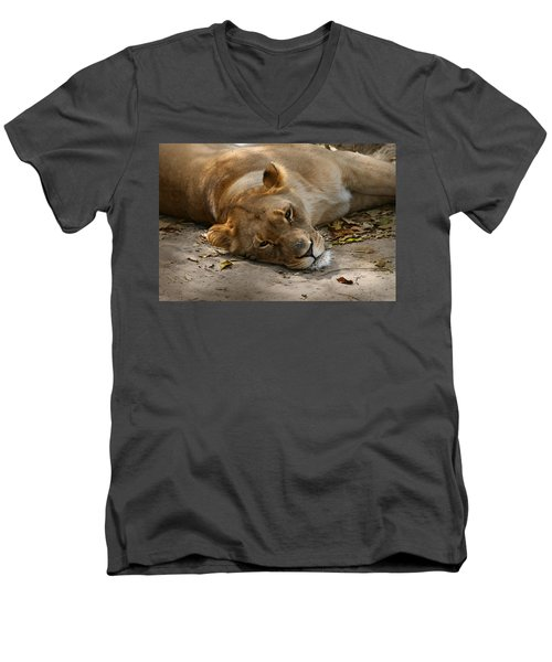 Men's V-Neck T-Shirt featuring the photograph Sleepy Lioness by Ann Lauwers