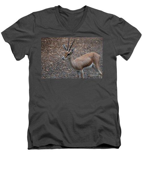 Slender Horned Gazelle Men's V-Neck T-Shirt by DejaVu Designs