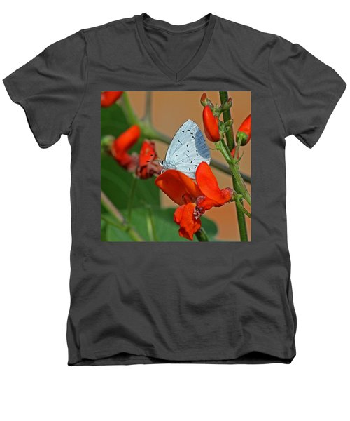 Small Blue Butterfly Men's V-Neck T-Shirt by Tony Murtagh