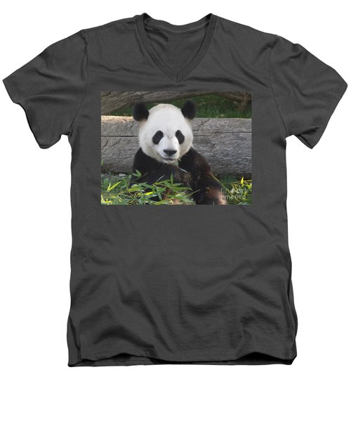 Smiling Giant Panda Men's V-Neck T-Shirt