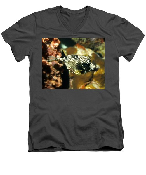 Smooth Trunkfish Men's V-Neck T-Shirt by Amy McDaniel