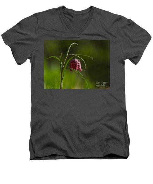 Snake's Head Men's V-Neck T-Shirt