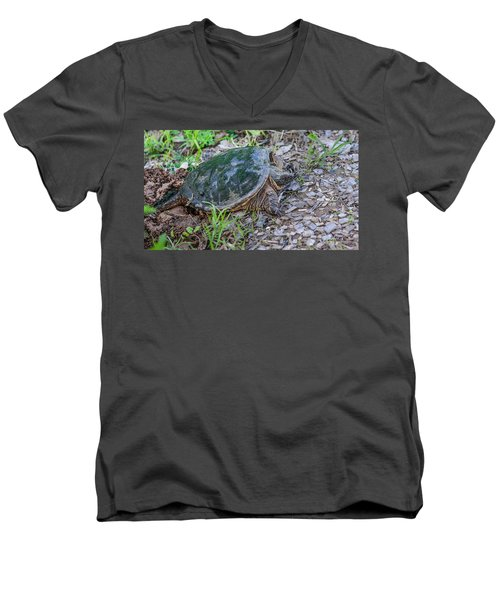 Snapper Eggs Men's V-Neck T-Shirt