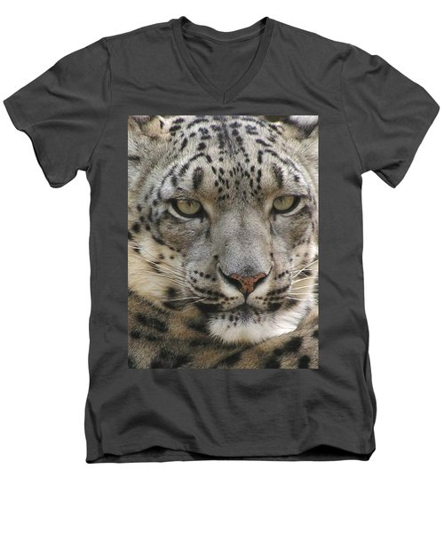 Men's V-Neck T-Shirt featuring the photograph Snow Leopard by Diane Alexander