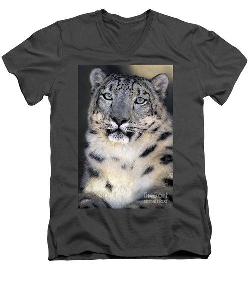 Men's V-Neck T-Shirt featuring the photograph Snow Leopard Portrait Endangered Species Wildlife Rescue by Dave Welling