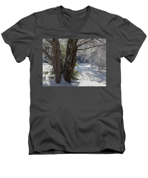 Snow Sparkles Men's V-Neck T-Shirt