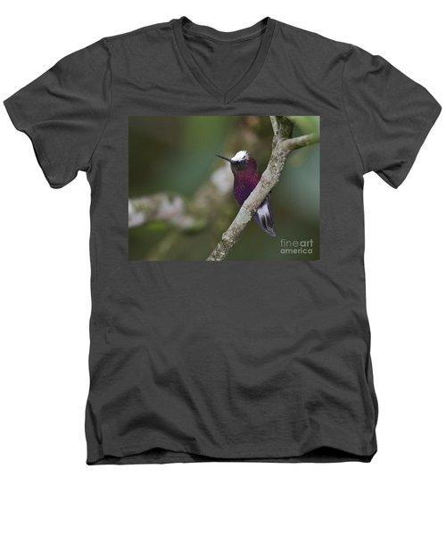 Snowcap.. Men's V-Neck T-Shirt