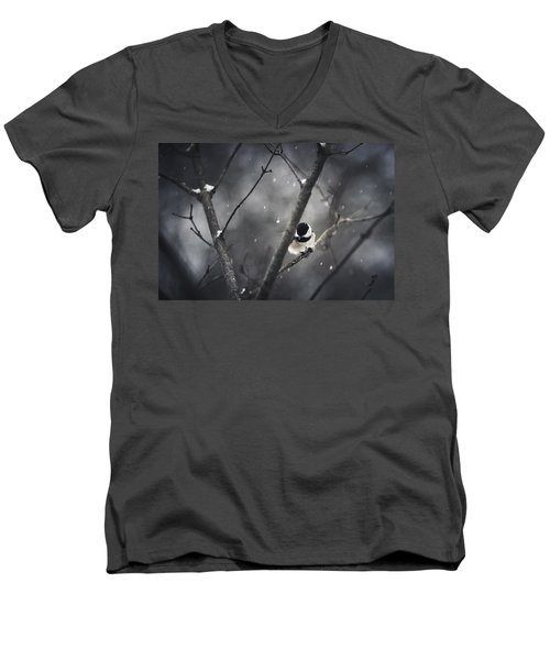 Snowy Chickadee Men's V-Neck T-Shirt by Shane Holsclaw