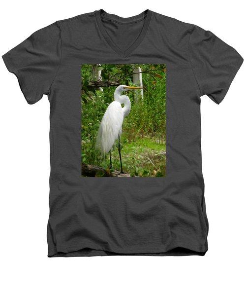 Snowy Egret Men's V-Neck T-Shirt by Melinda Saminski