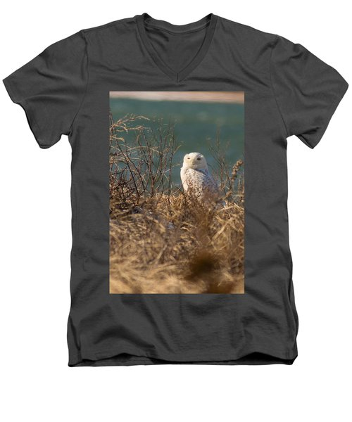 Snowy Owl At The Beach Men's V-Neck T-Shirt