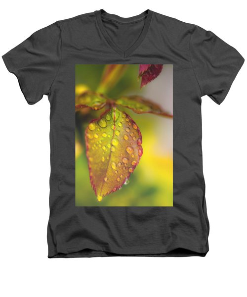 Soft Morning Rain Men's V-Neck T-Shirt